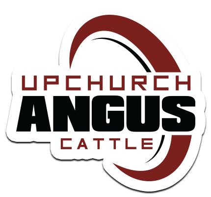 Upchurch Angus